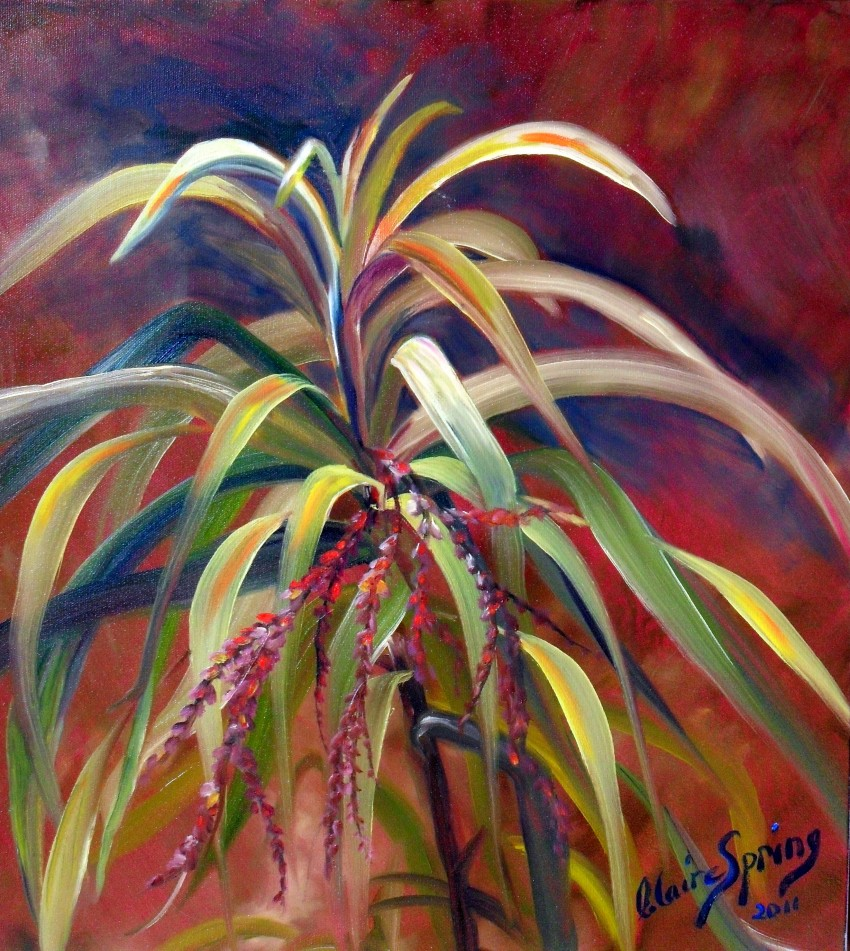 Cordyline by Claire Spring