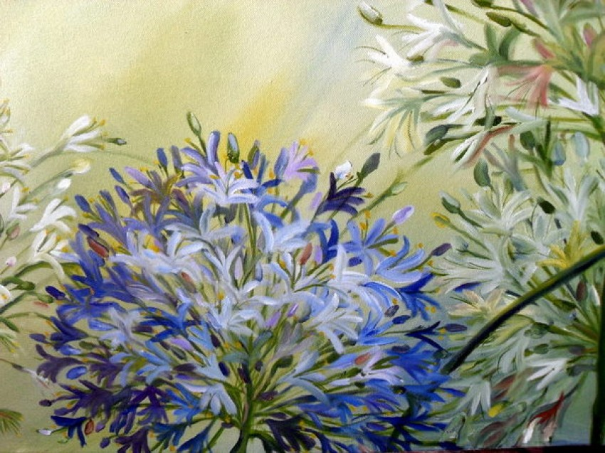 Detail of Blue and White Agapanthus by Claire Spring