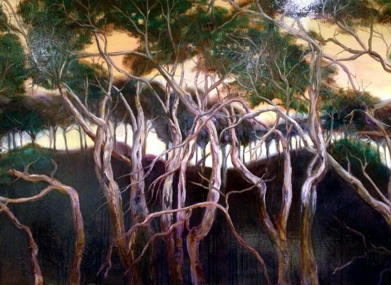 Moonah Trees of the Mornington Peninsula by Claire Spring