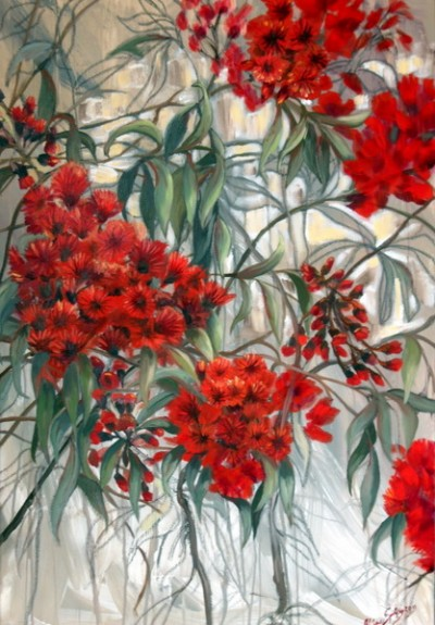 Red Flowering Eucalypt by Claire Spring
